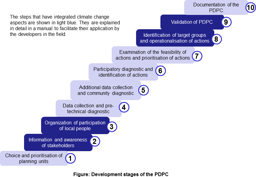 Development stages of the PDPC