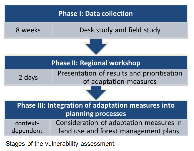 Stages of the integrated vulnerability assessment