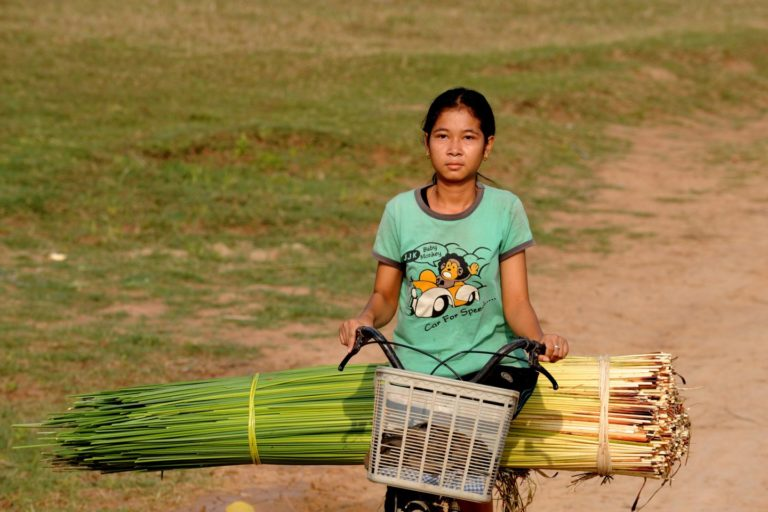 A woman transports plants on a bicycle