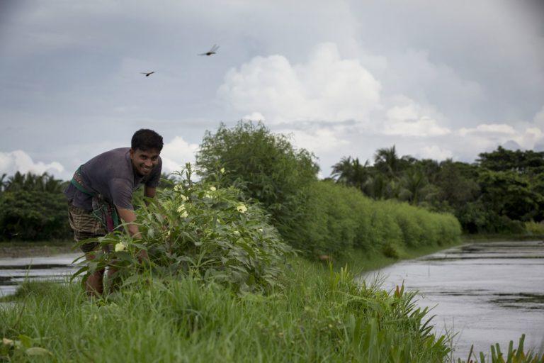 A man on a dike