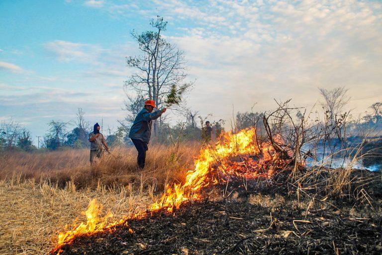 Men on a burning field