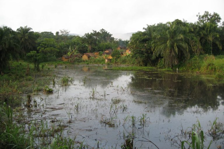 Flooded land in front of a village