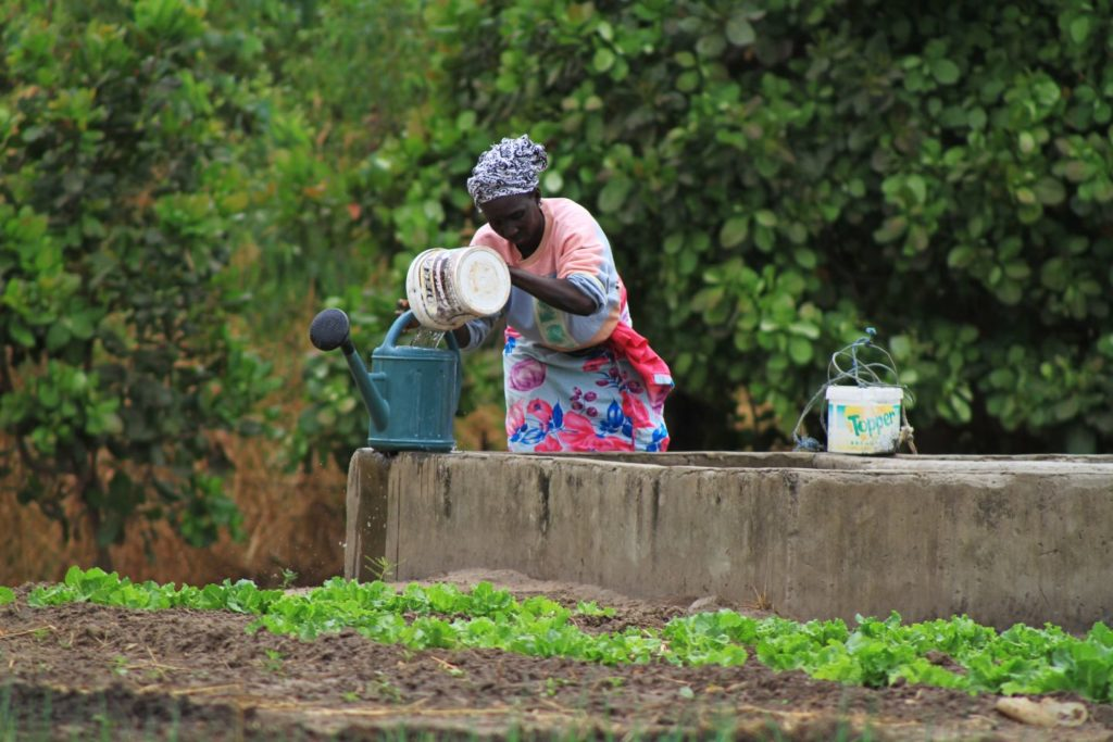 A woman fills water into a watering can