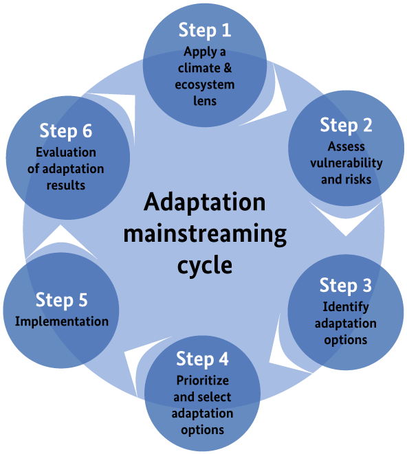 EbA Mainstreaming Cycle