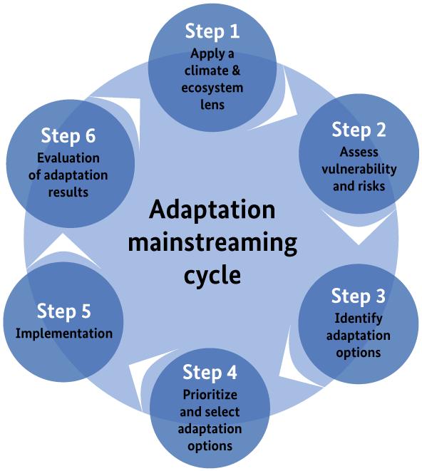 EbA Mainstreaming Cycle