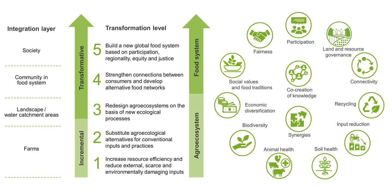 Framework Agroecology