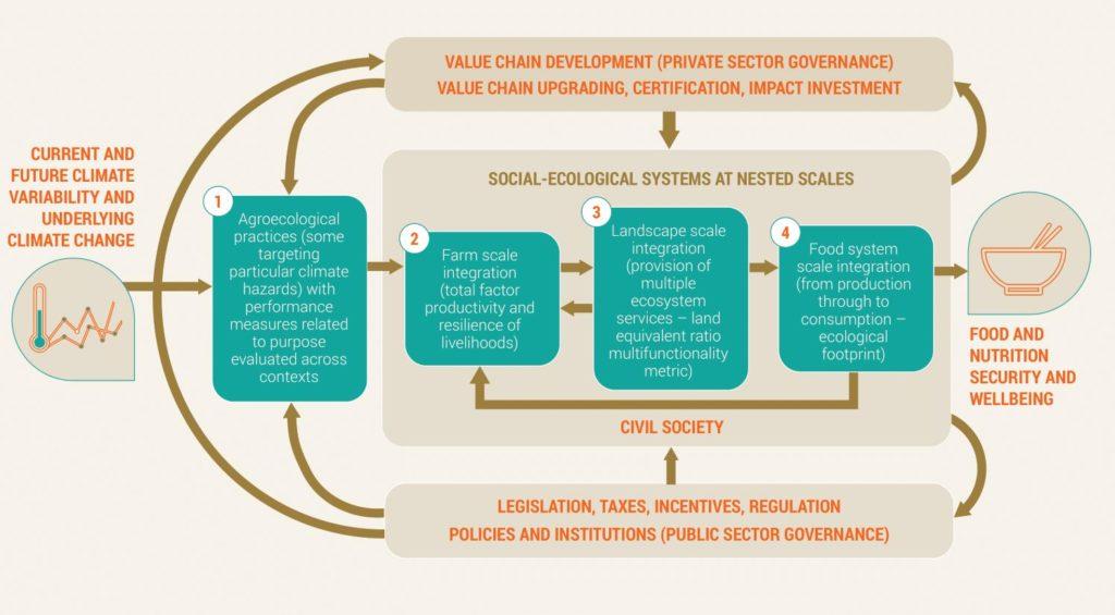 Framework Agroecological Adaptation