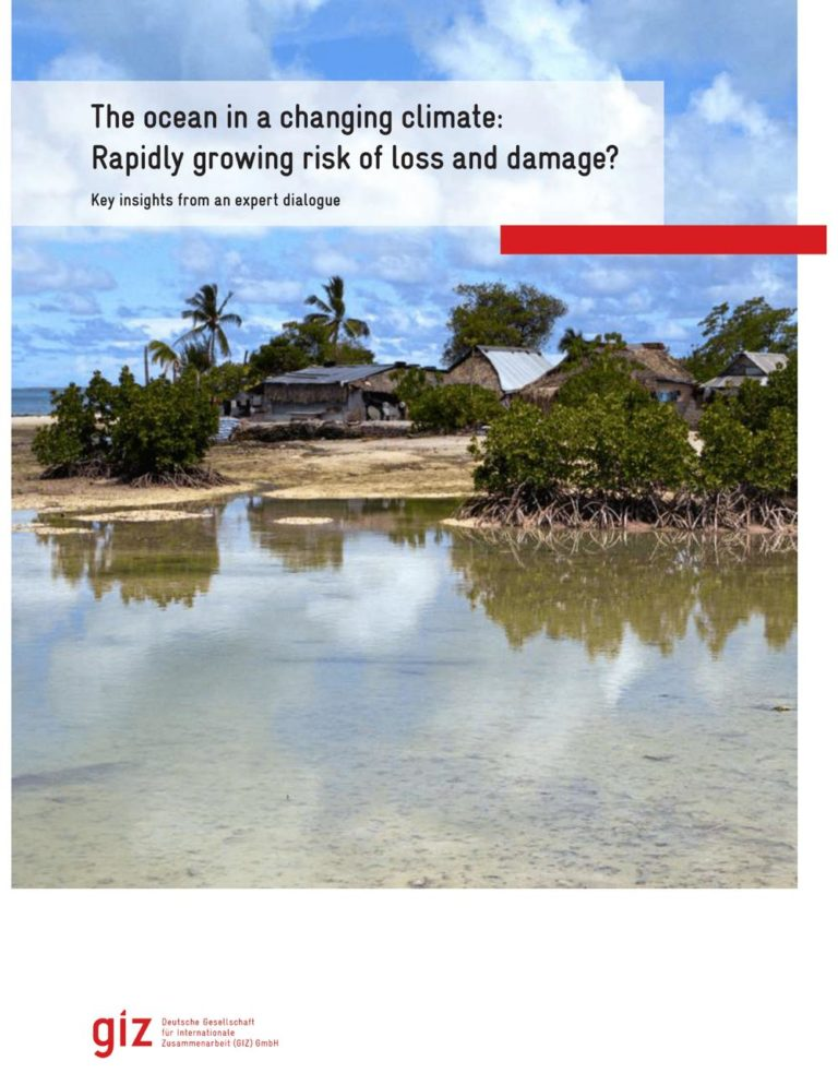Cover of the report of the expert dialogue 'The ocean in a changing climate: Rapidly growing risks of loss and damage?'