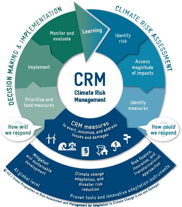 CRM interactive graphic